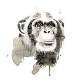 Chimpanzé Reproduction d'art par Philippe Debongnie