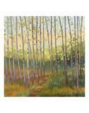 Vista Trees Reproduction d'art par Libby Smart