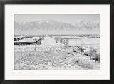 Manzanar from Guard Tower  View West (Sierra Nevada in Background)
