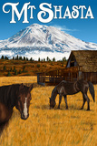 Mt Shasta View and Horses