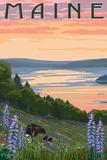 Maine - Lake and Bear Family