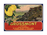 Grossmont Brand - El Cajon  California - Citrus Crate Label