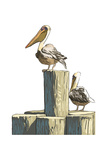 Pelican and Pilings - Icon
