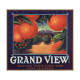 Grand View Brand - Ultra  California - Citrus Crate Label