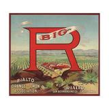 Big R Brand - Rialto  California - Citrus Crate Label