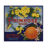 Primrose Brand - Duarte  California - Citrus Crate Label