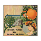 Riverside Oranges - Riverside  California - Citrus Crate Label