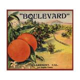 Boulevard Brand - Claremont  California - Citrus Crate Label
