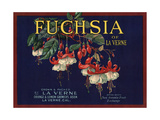 Fuchsia Brand - La Verne  California - Citrus Crate Label