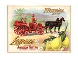 Festival Brand - Santa Barbara  California - Citrus Crate Label