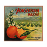 Hacienda Brand - California - Citrus Crate Label