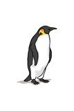 Emperor Penguin - Icon