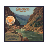 Sespe Brand - Fillmore  California - Citrus Crate Label