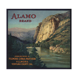 Alamo Brand - Fillmore  California - Citrus Crate Label