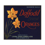 Daffodil Brand - Covina  California - Citrus Crate Label