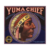 Yuma Chief Brand - Redlands  California - Citrus Crate Label
