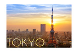 Tokyo  Japan - City View and Sunset