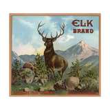 Elk Brand - Riverside  California - Citrus Crate Label