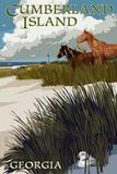 Cumberland Island  Georgia - Horses and Dunes with Lighthouse