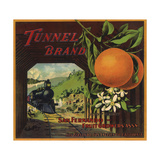Tunnel Brand - San Fernando  California - Citrus Crate Label