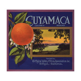 Cuyamaca Brand - El Cajon  California - Citrus Crate Label