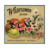 Wildflower Brand - Ruddock  California - Citrus Crate Label
