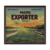 Pacific Exporter Brand - San Francisco  California - Citrus Crate Label