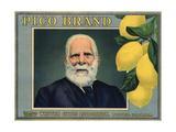 Pico Brand - Whittier  California - Citrus Crate Label
