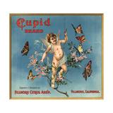 Cupid Brand - Fillmore  California - Citrus Crate Label