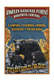 Angeles National Forest - Wrightwood  California - Black Bears Vintage Sign
