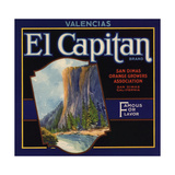 El Captain Brand - San Dimas  California - Citrus Crate Label