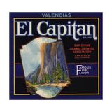 El Captain Brand - San Dimas  California - Citrus Crate Label