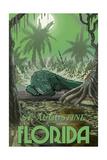 St Augustine  Florida - Alligator in Swamp