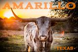 Amarillo  Texas - Longhorn and Sunset