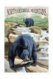 North Georgia Mountains - Black Bears Fishing