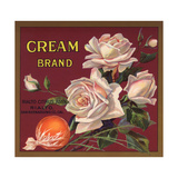 Cream Brand - Rialto  California - Citrus Crate Label