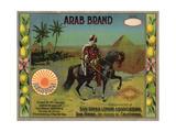 Arab Brand - San Dimas  California - Citrus Crate Label