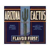 Arizona Cactus Brand - Phoenix  Arizona - Citrus Crate Label