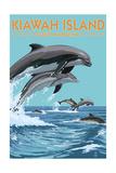 Kiawah Island  South Carolina - Dolphins Jumping
