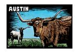 Austin  Texas - Longhorn - Scratchboard