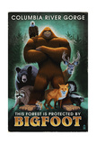 Columbia River Gorge - Respect Our Wildlife - Bigfoot