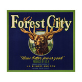 Forest City Brand - Lemon Cove  California - Citrus Crate Label