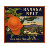 Banana Belt Brand - Villa Park  California - Citrus Crate Label