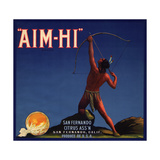 Aim Hi Brand - San Fernando  California - Citrus Crate Label