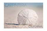 Carpinteria  California - Sand Dollar on Beach