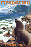 Mendocino  California - Sea Lions