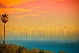 Laguna Beach  California - Sunset and Birds