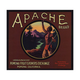 Apache Brand - Pomona  California - Citrus Crate Label