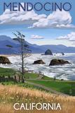 Mendocino  California - Rocky Coastline