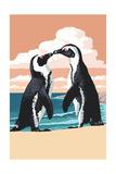 Black-Footed Penguins Kissing